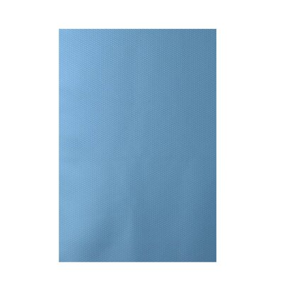 Solid Blue Indoor/Outdoor Area Rug Rug Size: 5 x 7