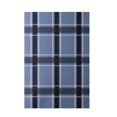 Plaid Light Blue Indoor/Outdoor Area Rug Rug Size: 2' x 3'