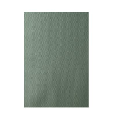 Solid Green Indoor/Outdoor Area Rug Rug Size: 2 x 3
