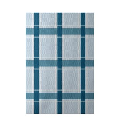 Plaid Light Blue Indoor/Outdoor Area Rug Rug Size: 2 x 3