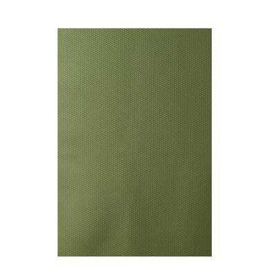 Solid Green Indoor/Outdoor Area Rug Rug Size: 5 x 7