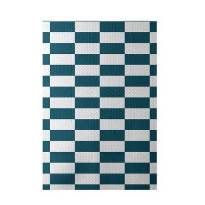 Plaid Teal Indoor/Outdoor Area Rug Rug Size: 4 x 6
