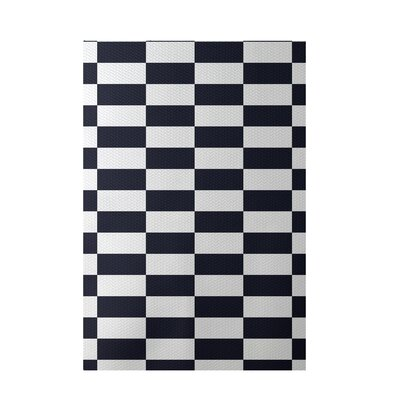 Plaid Navy Blue Indoor/Outdoor Area Rug Rug Size: 4' x 6'