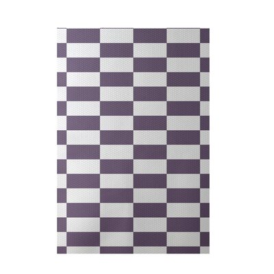 Plaid Teal Indoor/Outdoor Area Rug Rug Size: Rectangle 2 x 3