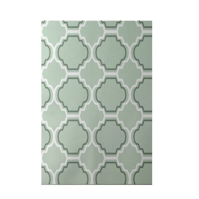 Road to Morocco Geometric Print Green Pint Indoor/Outdoor Area Rug Rug Size: 4 x 6