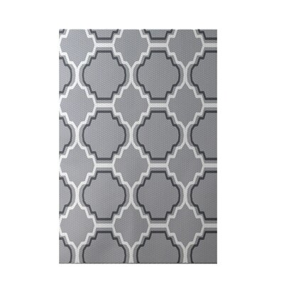 Road to Morocco Geometric Print Gray Indoor/Outdoor Area Rug Rug Size: 4 x 6