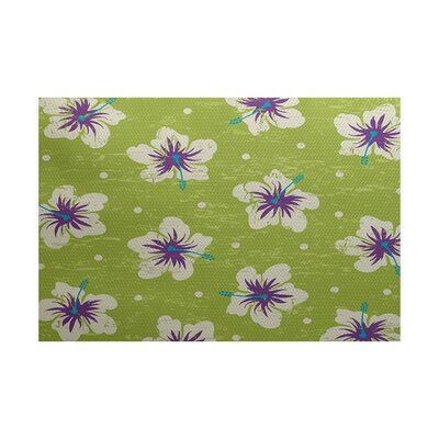 Golden Beach Light Green Indoor/Outdoor Area Rug Rug Size: 2 x 3