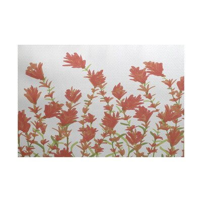 Orchard Lane Coral Indoor/Outdoor Area Rug Rug Size: 2 x 3