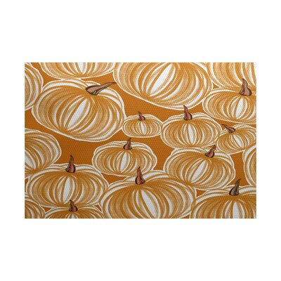 Miller Orange Indoor/Outdoor Area Rug Rug Size: 2 x 3