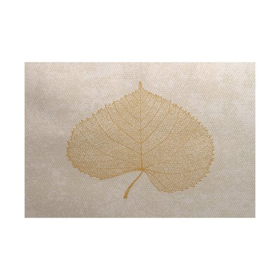 Miller Brown Indoor/Outdoor Area Rug Rug Size: 4 x 6