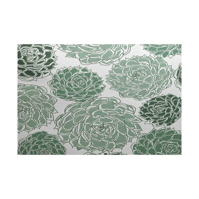 Neville Green Indoor/Outdoor Area Rug Rug Size: 2 x 3