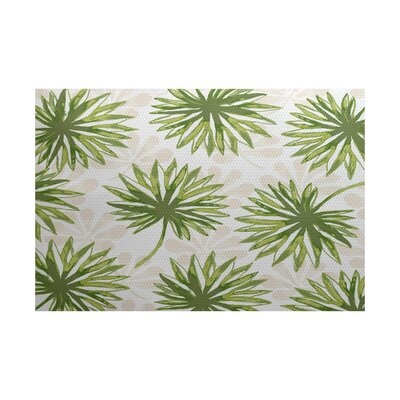 Costigan Green Indoor/Outdoor Area Rug Rug Size: 2' x 3'