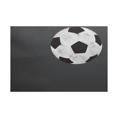Bauer Black Area Rug Rug Size: Rectangle 2 x 3