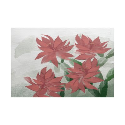 Amanda Christmas Cactus Floral Print Coral/Green Indoor/Outdoor Area Rug Rug Size: Rectangle 3 x 5