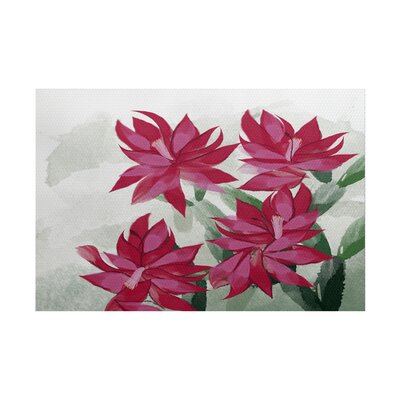 Amanda Christmas Cactus Floral Print Pink/Green Indoor/Outdoor Area Rug Rug Size: Rectangle 2 x 3
