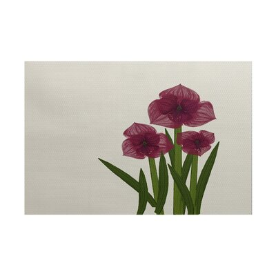 Amanda Amaryllis Floral Print Burgundy/Green Indoor/Outdoor Area Rug Rug Size: Rectangle 2 x 3