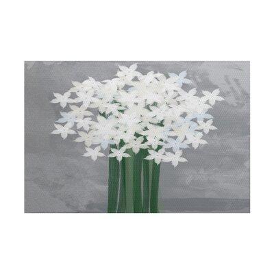 Amanda Paperwhites Floral Print Gray/Green Indoor/Outdoor Area Rug Rug Size: 3 x 5