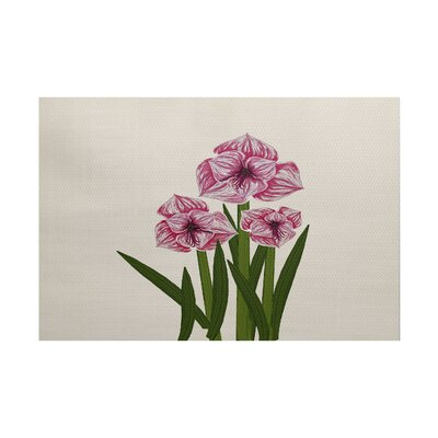 Amanda Amaryllis Floral Print Pink/Green Indoor/Outdoor Area Rug Rug Size: Rectangle 3 x 5
