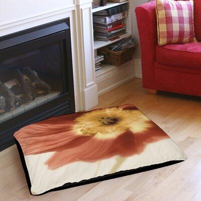 """Mystic Poppy 1 Indoor/Outdoor Pet Bed Size: 40"""" L X 30"""" W"""