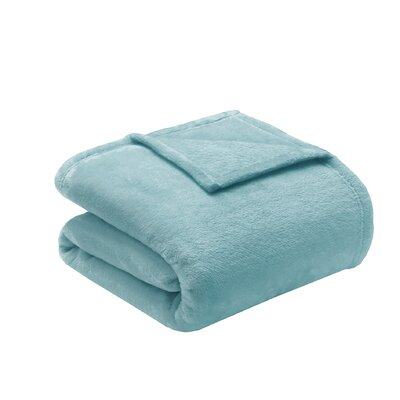 Microlight Over-sized Plush Blanket Color: Aqua, Size: King