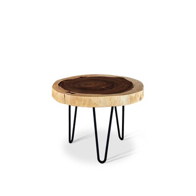 Anissa Pinto End Table