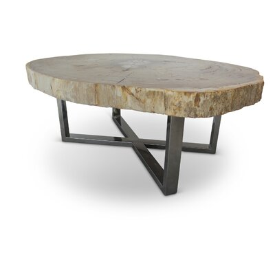 Hopkinton Modern Coffee Table Table Top Color: Natural Light