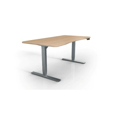 StandDesk Desk Base Finish: Gray
