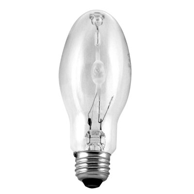 Halide Light Bulb Wattage: 100W