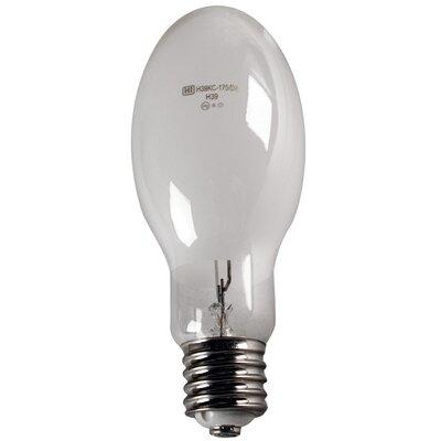 175W Light Bulb