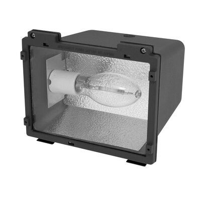 42W Compact Florescence Small Flood Light
