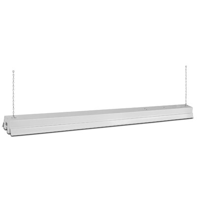 4 Foot Fluorescent Vaporproof Lights Finish: White