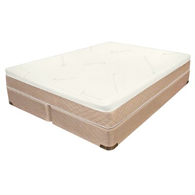 Memory-Cell/Latex Digital 10 Air Mattress Size: Twin XL