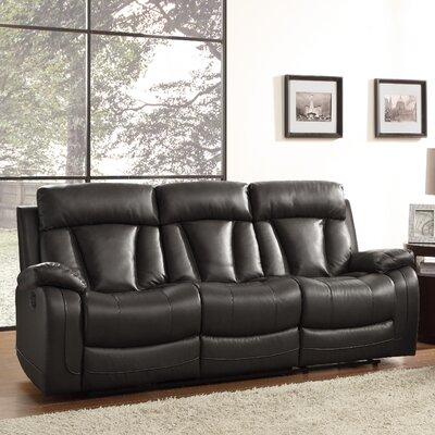 Ackerman Double Reclining Sofa Upholstery: Black