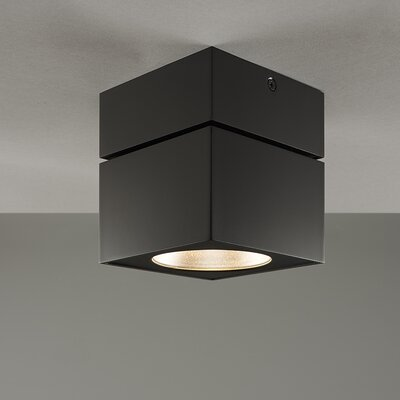 Surface Square Flush Mount Color: Black