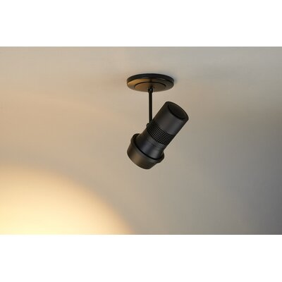 Magnum 1-Light 1100 Lumen Frosted Spotlight Color: Black