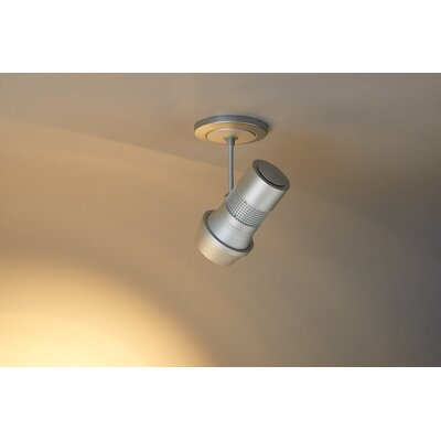 Magnum 1-Light 1100 Lumen Frosted Spotlight Finish: Matte Chrome