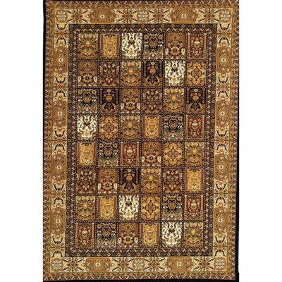 Mona Lisa Black Design A Rug Rug Size: 5'4