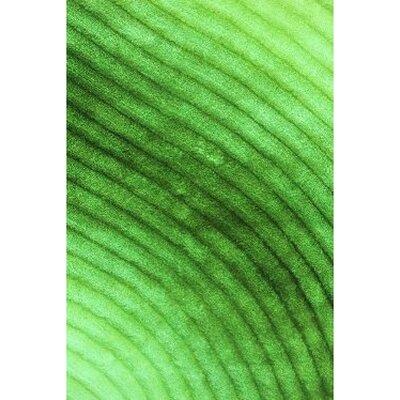 Shaggy 3D Green Area Rug Rug Size: 76 x 102