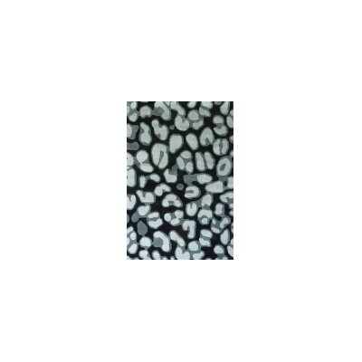 Transition Gray Area Rug Rug Size: 5 x 7
