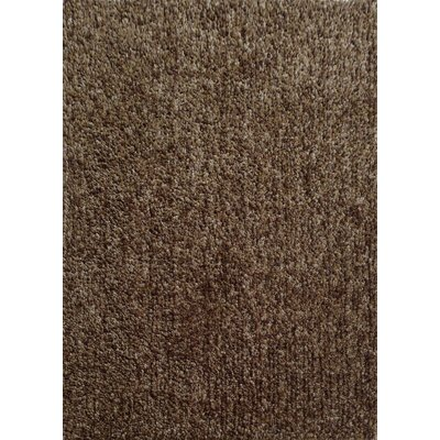 Harmony 2 Toned Winter Gray Shag Area Rug Rug Size: 5 x 7