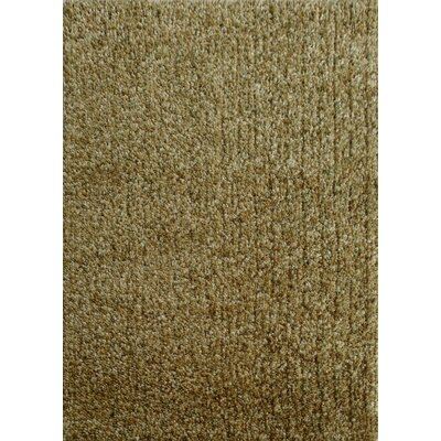 Harmony 2 Toned Green Shag Area Rug Rug Size: Rectangle 5 x 7