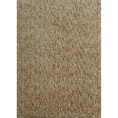 Harmony 2 Toned Beige Shag Area Rug Rug Size: Rectangle 8 x 10