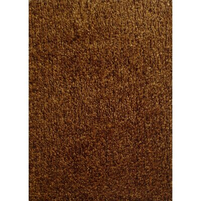 Harmony 2 Toned Brown Shag Area Rug Rug Size: 5 x 7