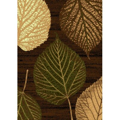 LifeStyle Brown/Green Indoor/Outdoor Area Rug Rug Size: 5 x 8