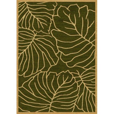 LifeStyle Green Indoor/Outdoor Area Rug Rug Size: 5 x 8