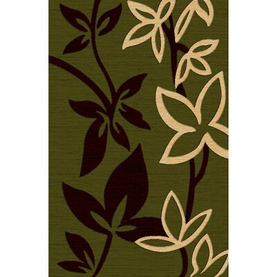 Lifestyle Green Area Rug Rug Size: 5 x 8