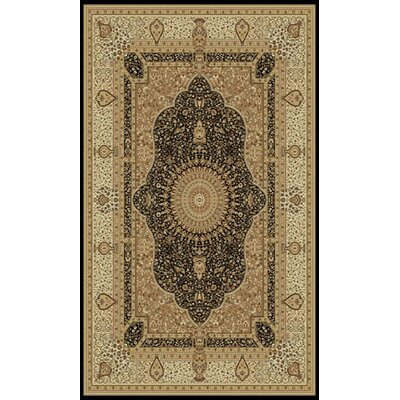 Tabriz Black Indoor/Outdoor Area Rug Rug Size: 5 x 8