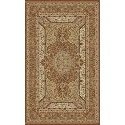 Tabriz Brown Indoor/Outdoor Area Rug Rug Size: 5' x 8'