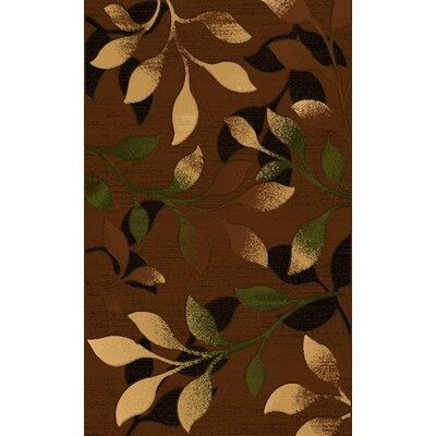 LifeStyle Brown Area Rug Rug Size: 8 x 11