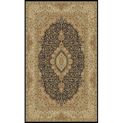 Tabriz Black Indoor/Outdoor Area Rug Rug Size: 5' x 8'